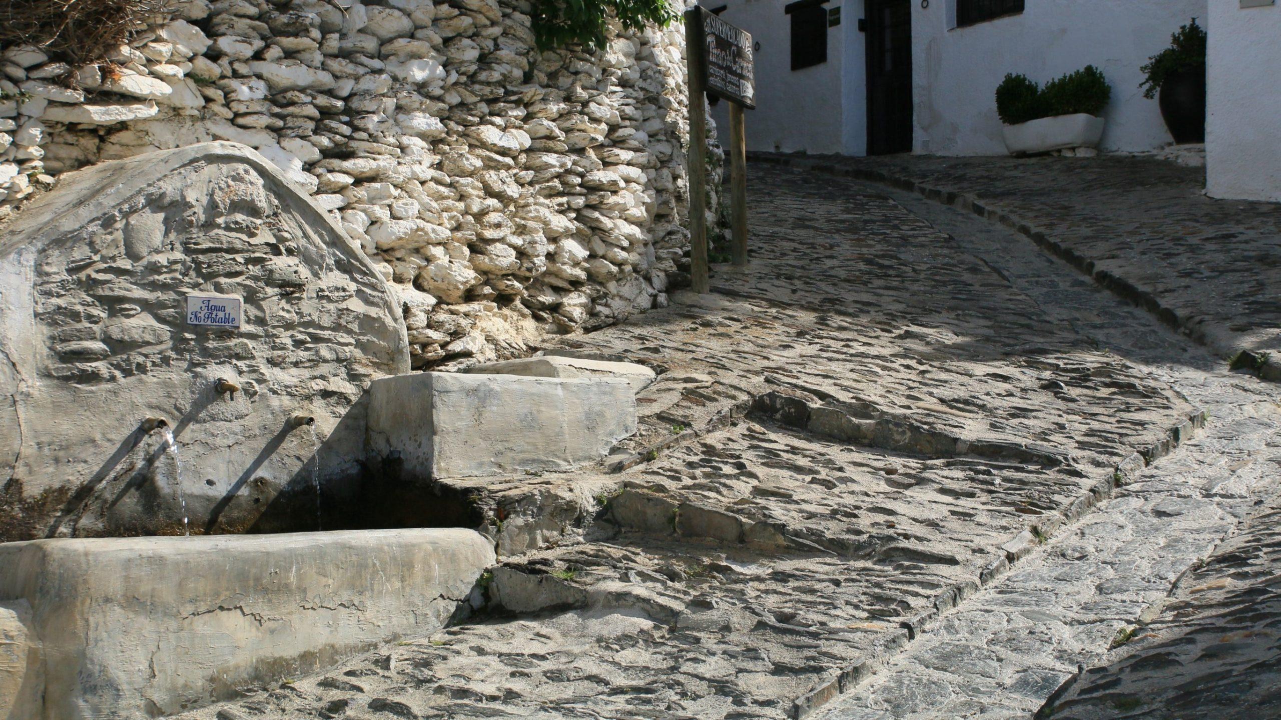 Rich results on google´s SERP when searching for La Cebadilla