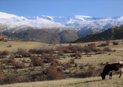 Sierra Nevada Spanje